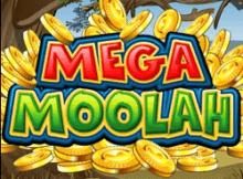 Another Mega Moolah slot online winner