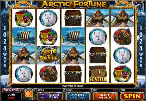 machine a sous arctic fortune