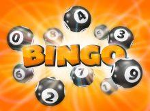 bingo platform